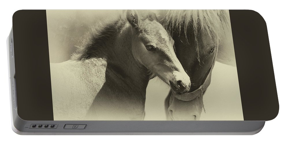 Horse Portable Battery Charger featuring the photograph Two Souls, One Heart by Theodor Dinulescu