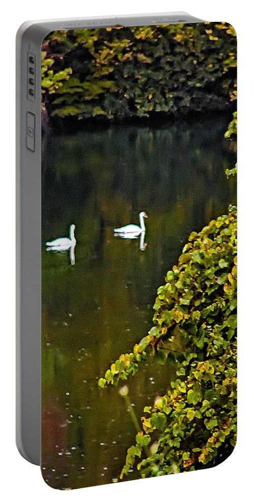 Poconos Portable Battery Charger featuring the photograph Two Swans by Bill Cannon