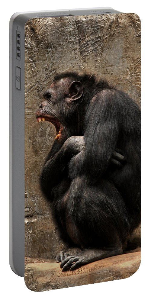 Ape Portable Battery Charger featuring the photograph Uaaaaaahhhhhhhh .... by Heike Hultsch