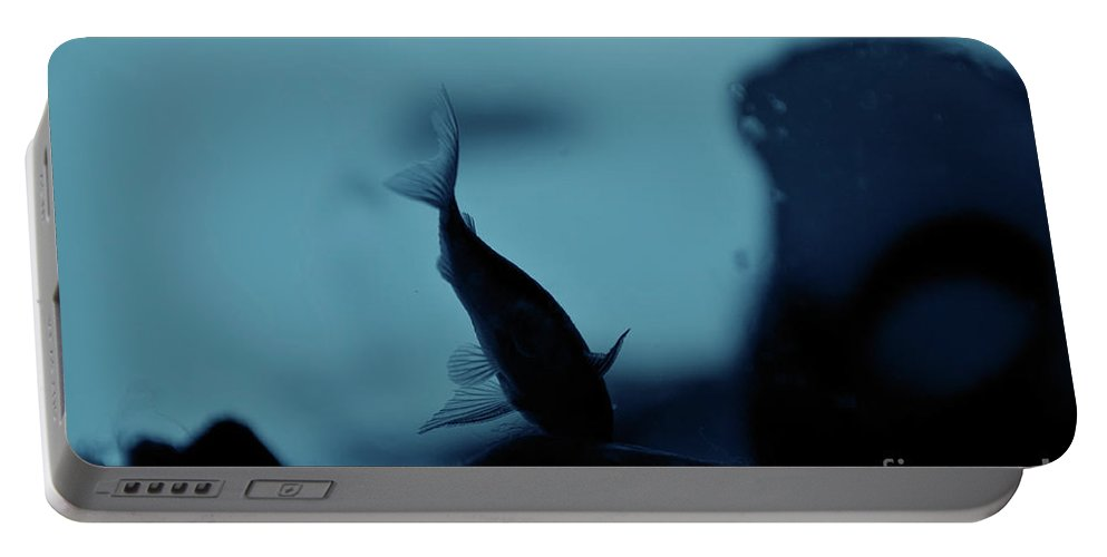 Underwater Portable Battery Charger featuring the photograph Underwater by Ilaria Andreucci