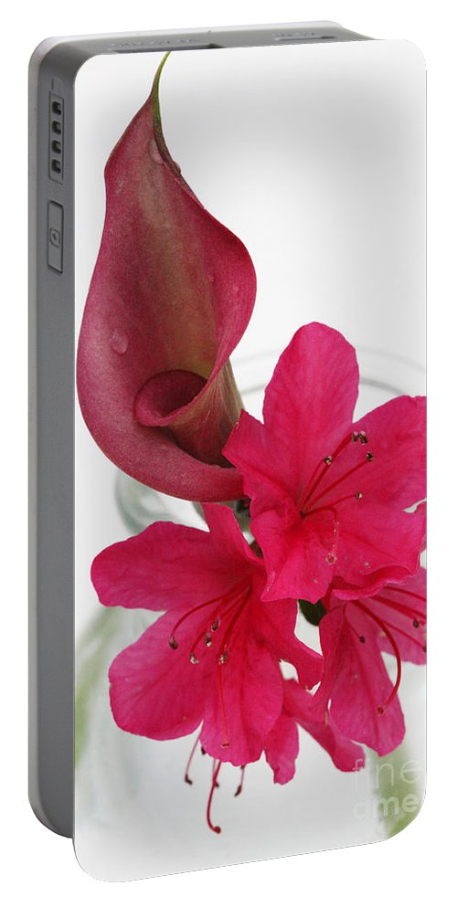 unexpected Pairing Portable Battery Charger featuring the photograph Unexpected Pairing 2 by Amanda Barcon