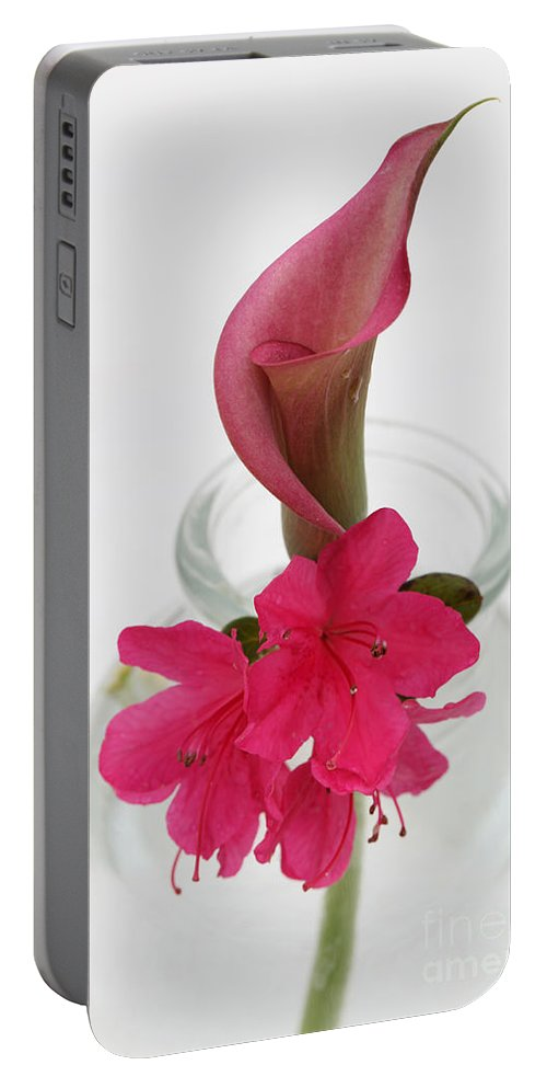 unexpected Pairing amanda Barcon Portable Battery Charger featuring the photograph Unexpected Pairing by Amanda Barcon