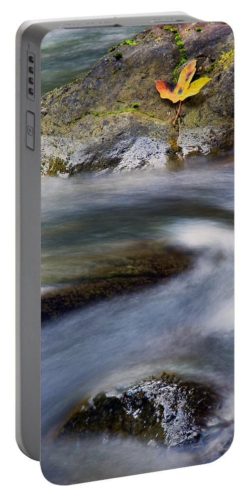 Leaf Portable Battery Charger featuring the photograph Unhurried by Mike Dawson