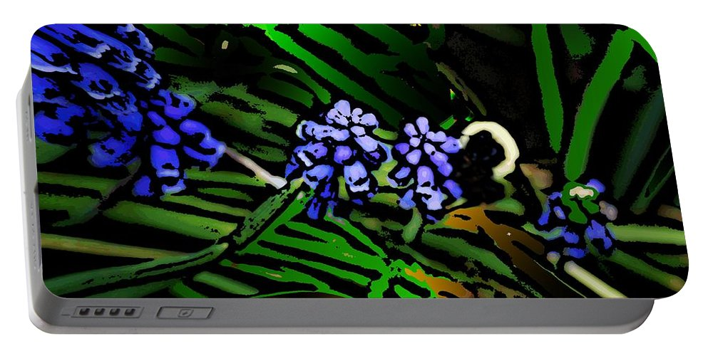 Portable Battery Charger featuring the photograph Untitled 7-02-09 by David Lane
