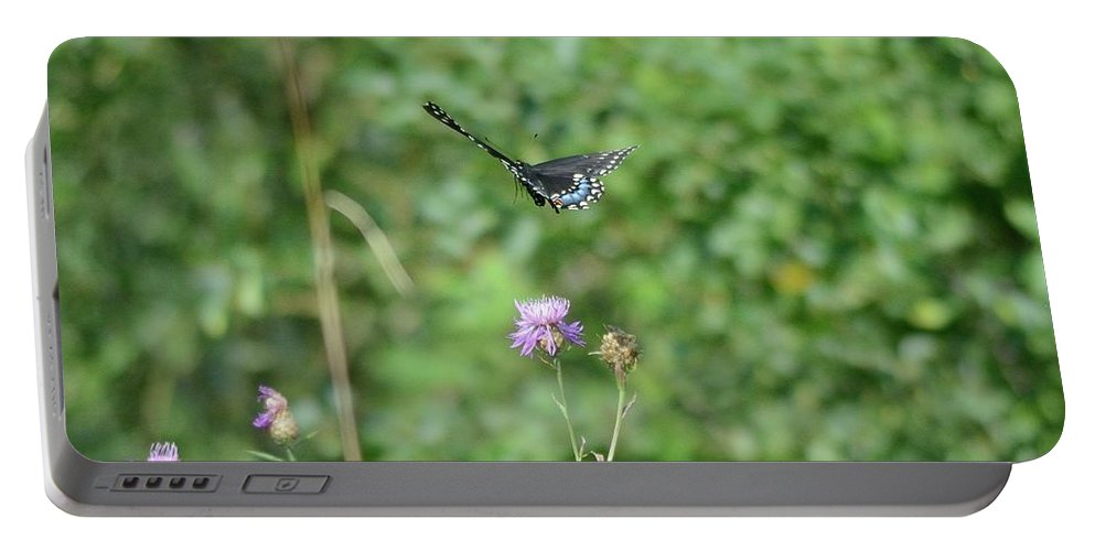Outdoor Portable Battery Charger featuring the photograph Up, Up And Away-black Swallowtail Butterfly by David Porteus