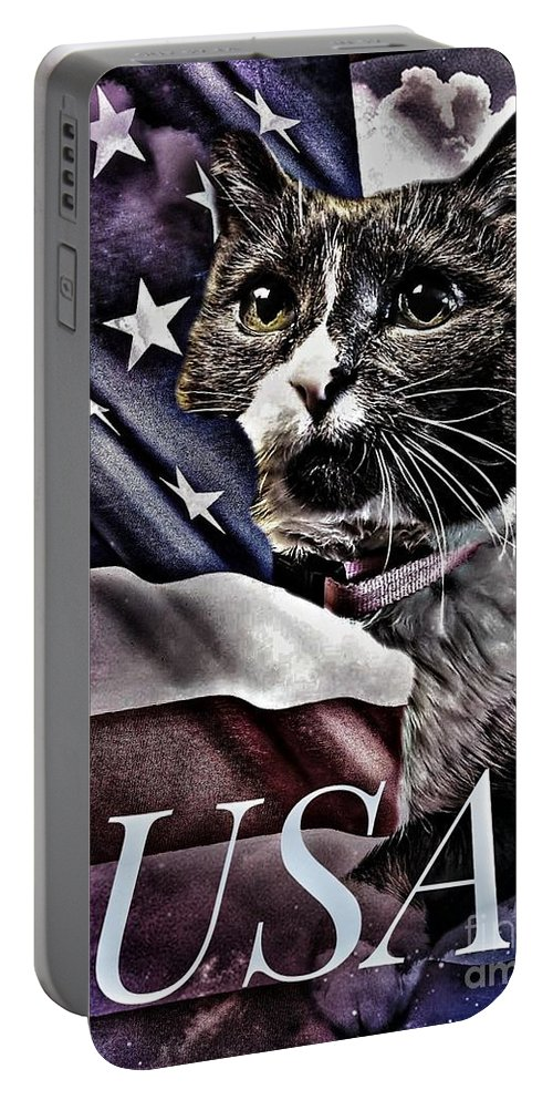 Portable Battery Charger featuring the photograph USA by Donald Wilkerson