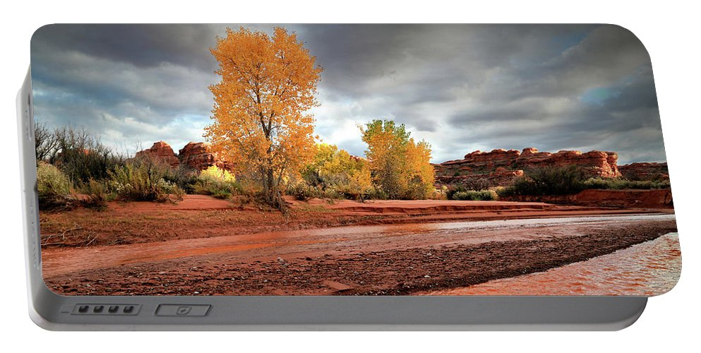 Utah Portable Battery Charger featuring the photograph Utah Desert Wash by Gary Yost