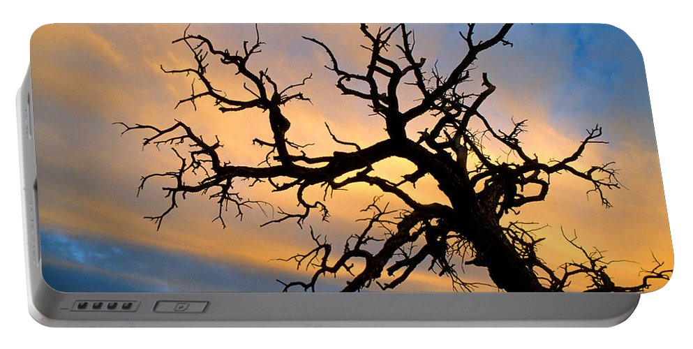 Tree Portable Battery Charger featuring the photograph Utah Sunset by Jerry McElroy