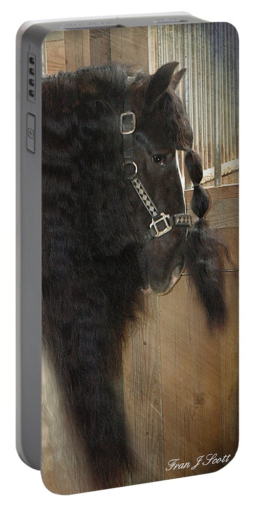 Horse Photographs Portable Battery Charger featuring the photograph Valentino's Mane by Fran J Scott