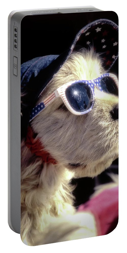 Venice Beach Portable Battery Charger featuring the photograph Venice Beach Dog by Samuel M Purvis III
