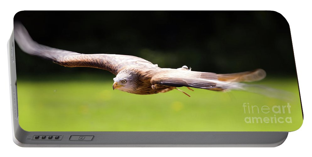 Kite Portable Battery Charger featuring the photograph Very Low Pass by Angel Ciesniarska