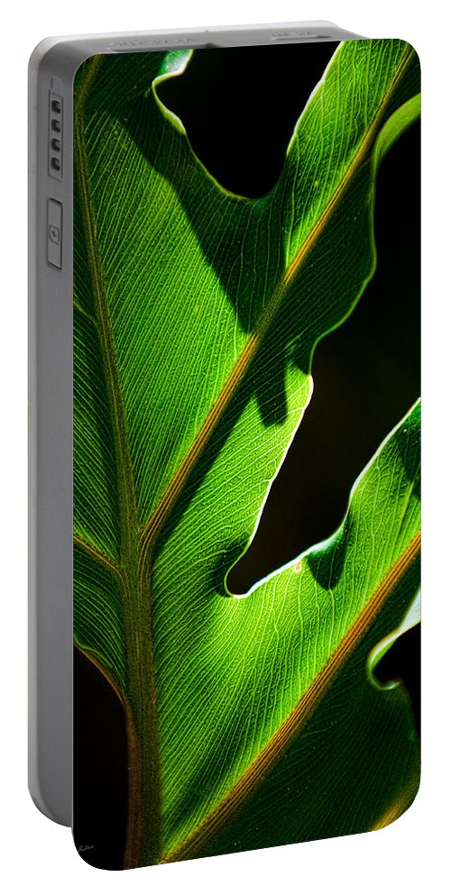 Leaf Portable Battery Charger featuring the photograph Vibrant Green by Christopher Holmes