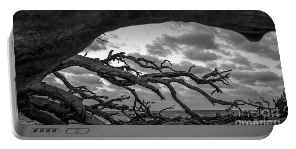 Driftwood Beach Portable Battery Charger featuring the photograph View Within by Amanda Sinco