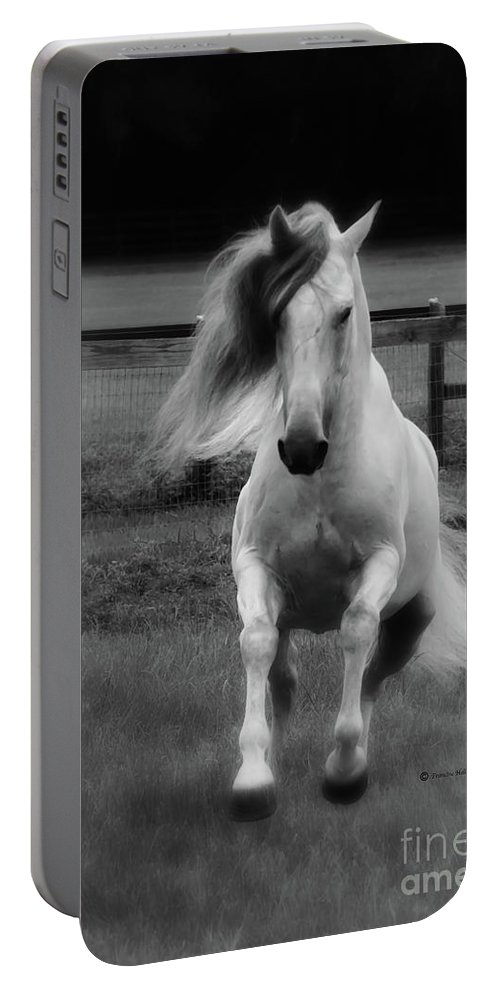 Andalusian Portable Battery Charger featuring the photograph Vikingo Bw by Francine Hall