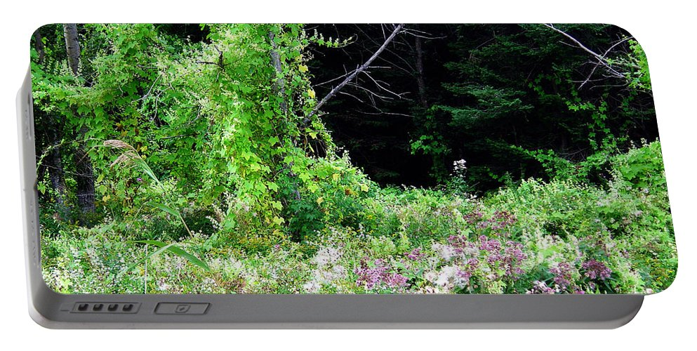Vines Growth Near Pine Falls Manitoba Portable Battery Charger featuring the photograph Vines by Joanne Smoley