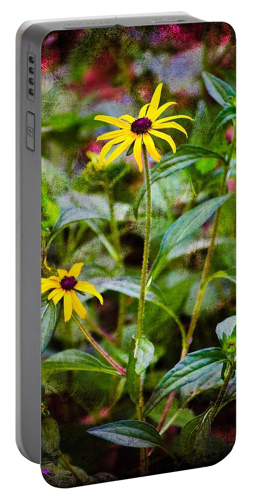 Flower Portable Battery Charger featuring the photograph Vintage Black-eyed Susans by Rich Leighton