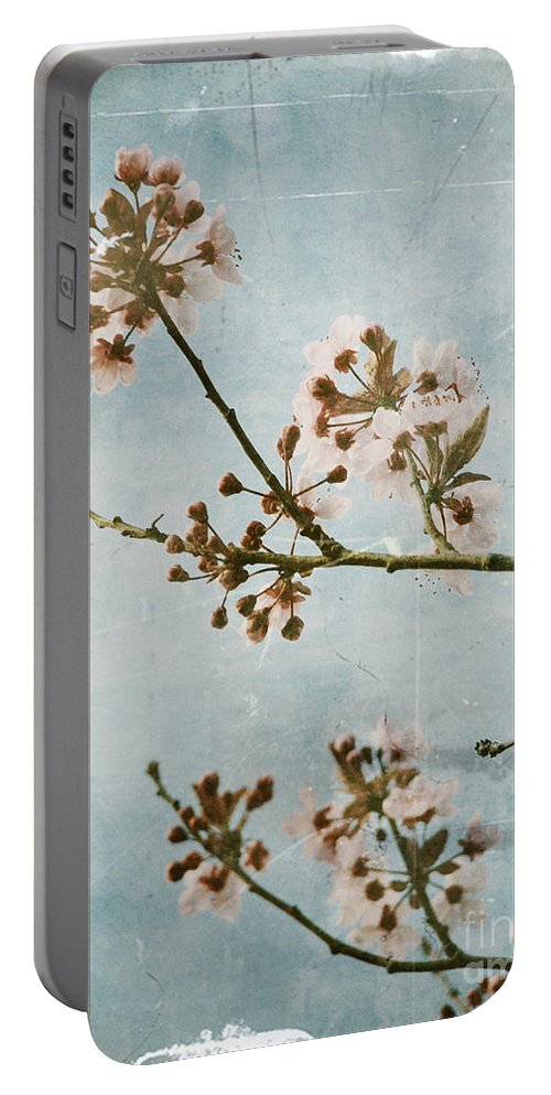 Blossoms Portable Battery Charger featuring the photograph Vintage Blossoms by Tara Turner