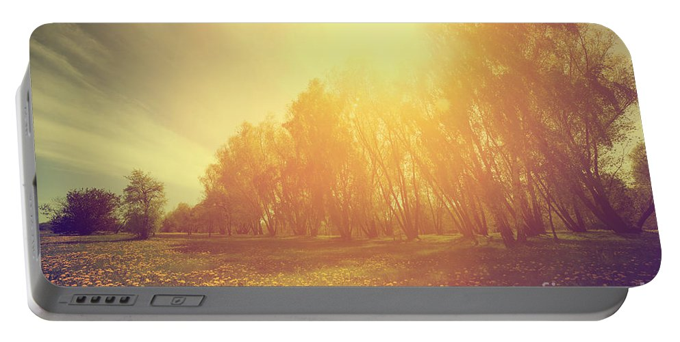 Countryside Portable Battery Charger featuring the photograph Vintage Spring Sunny Park by Michal Bednarek