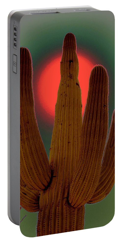 Mexico Portable Battery Charger featuring the photograph Viva La Vida by Susanne Van Hulst