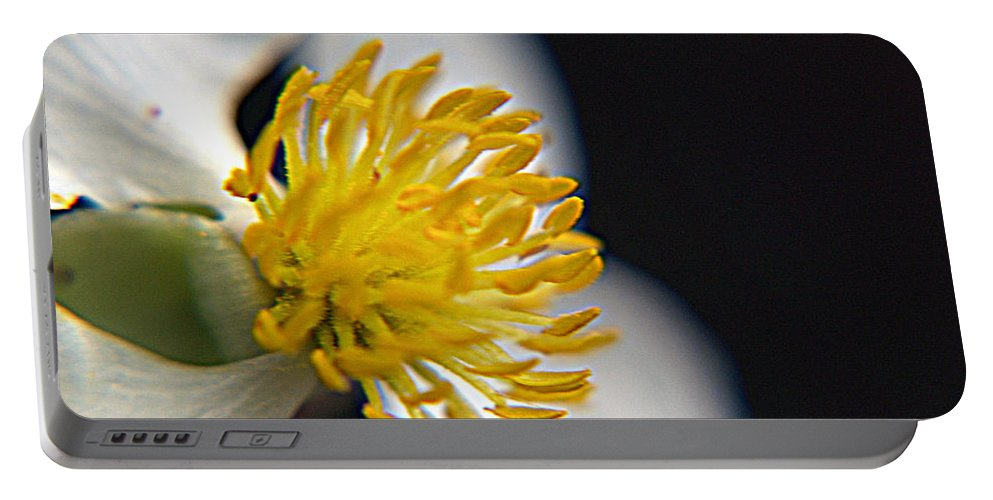 Flower Portable Battery Charger featuring the photograph Waiting For A Bee by Bob Johnson