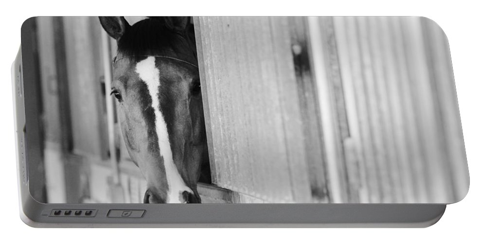 Horse Portable Battery Charger featuring the photograph Waiting For A Ride Black And White by Jill Reger
