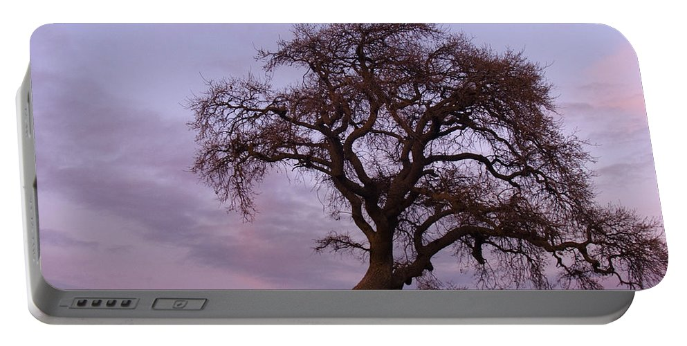 Livermore Portable Battery Charger featuring the photograph Waiting For Paul by Karen W Meyer
