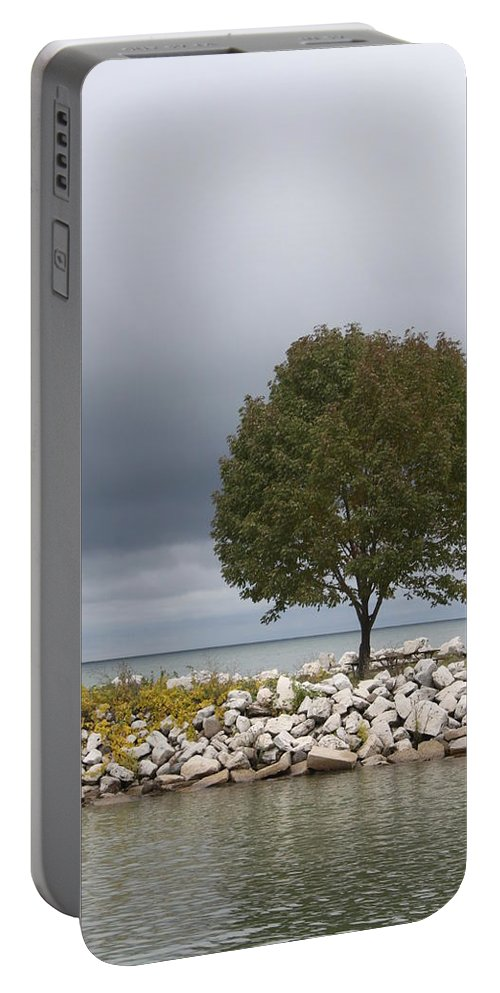Tree Portable Battery Charger featuring the photograph Waiting For The Storm by Lauri Novak