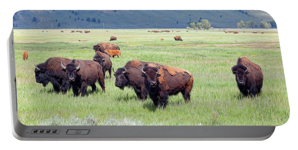 Bison Portable Battery Charger featuring the photograph Waiting To Merge by Stephen Schwiesow