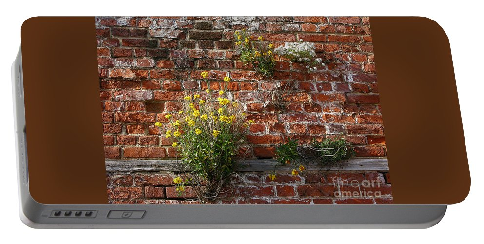 Wallflowers Portable Battery Charger featuring the photograph Wall Flowers by Ann Horn