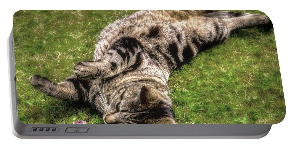 Cat Portable Battery Charger featuring the photograph Want To Play by Pennie McCracken