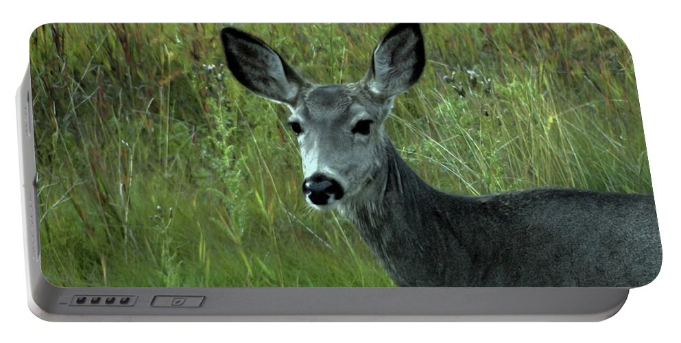 Wary Portable Battery Charger featuring the photograph Wary Doe by Al Bourassa