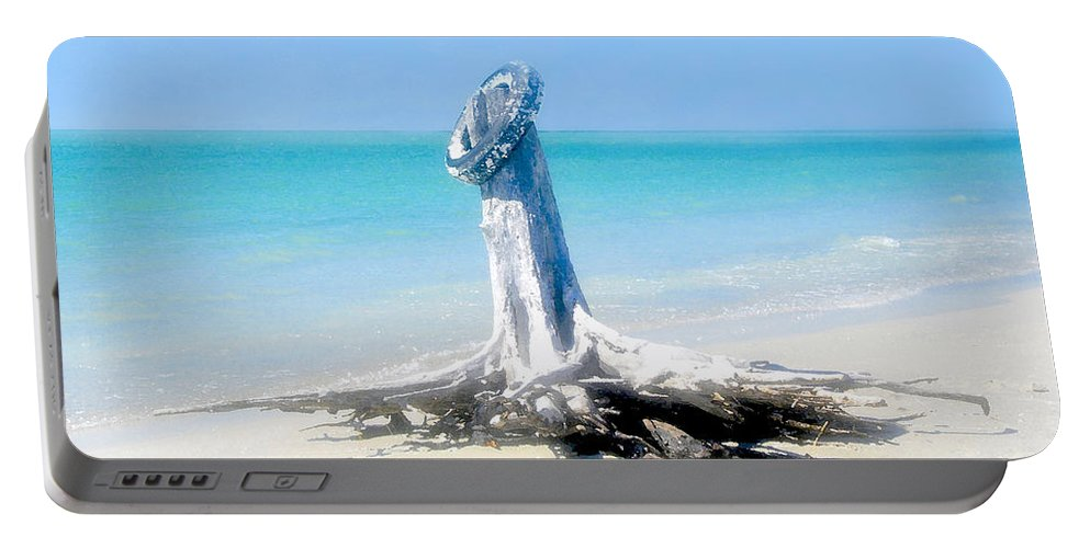 Tire Portable Battery Charger featuring the painting Washed Ashore by David Lee Thompson