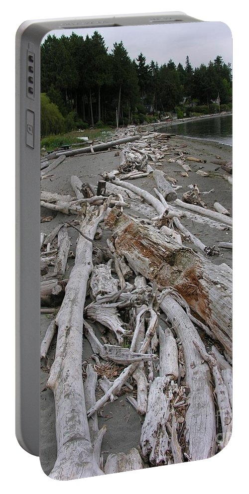 Beach Portable Battery Charger featuring the photograph Washed Up by Diane Greco-Lesser