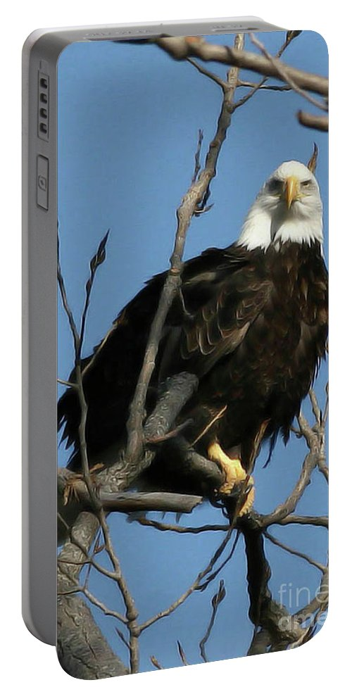 Eagle Portable Battery Charger featuring the photograph Watch On The Fox by Tommy Anderson