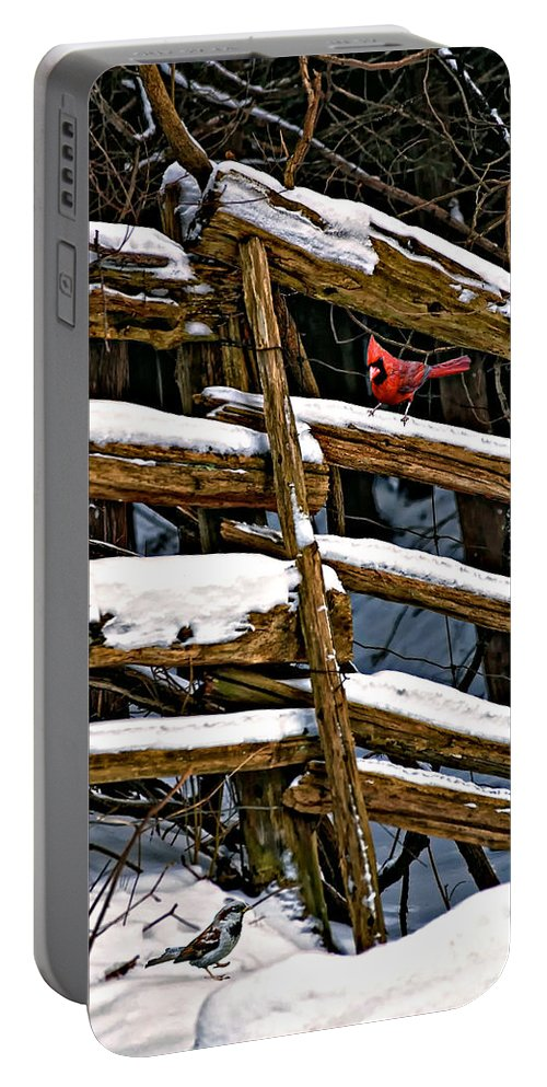 Winter Portable Battery Charger featuring the photograph Watching You by Steve Harrington