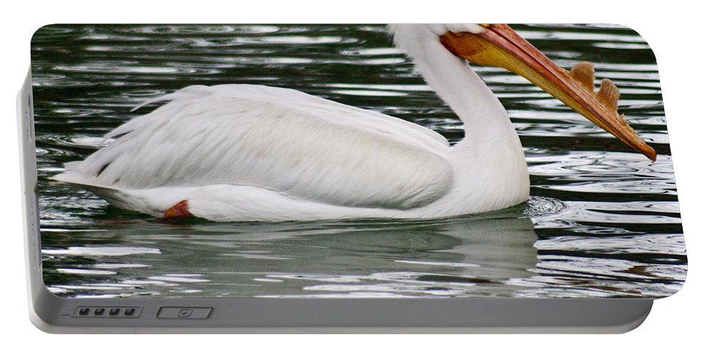 Water Portable Battery Charger featuring the photograph Water Bird With Notches by Douglas Barnett