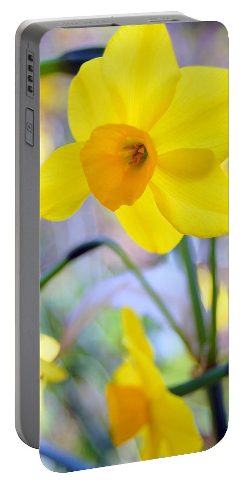 Daffodil Portable Battery Charger featuring the photograph Water Color Daffodil by Amy Fose