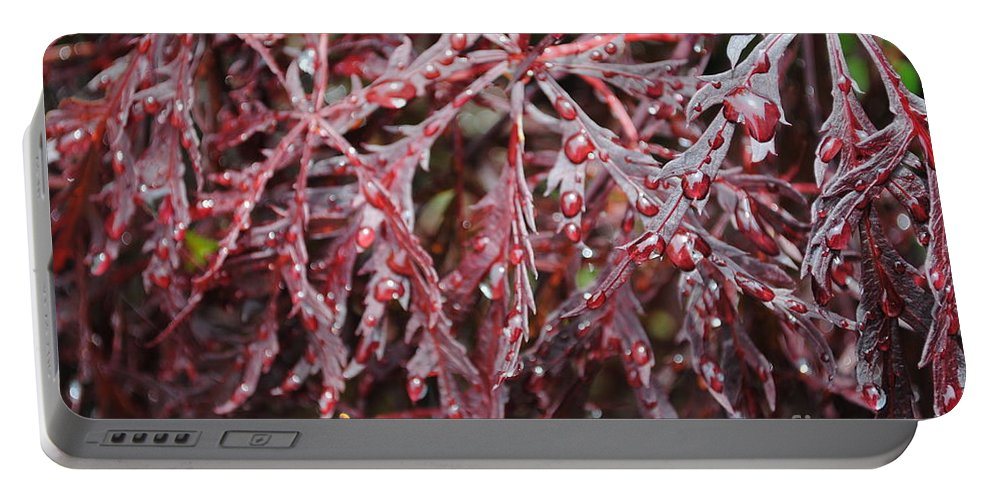 Floral Portable Battery Charger featuring the photograph Water Leaf by Jost Houk