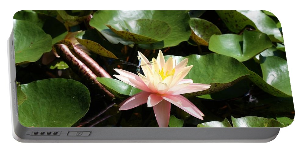 Water Lilly Portable Battery Charger featuring the photograph Water Lilly With Dragonfly by Kristina Jones