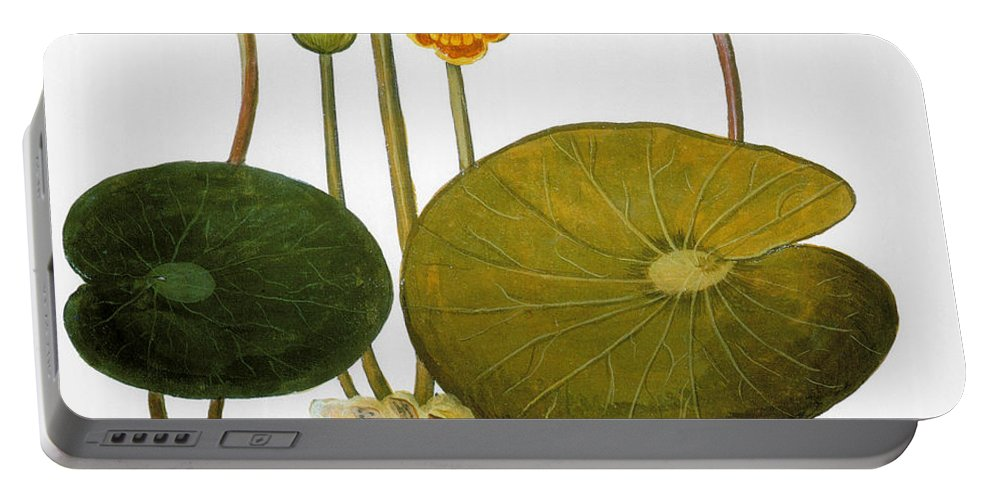 1613 Portable Battery Charger featuring the photograph Water Lily, 1613 by Granger