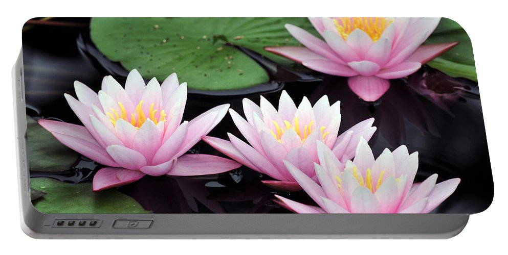 Water Lilies Portable Battery Charger featuring the photograph water lily 91 Sunny Pink Water Lily by Terri Winkler
