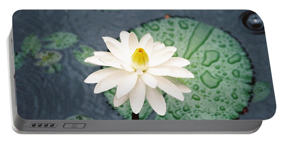 Flowers Portable Battery Charger featuring the photograph Water Lily by Kathy McClure