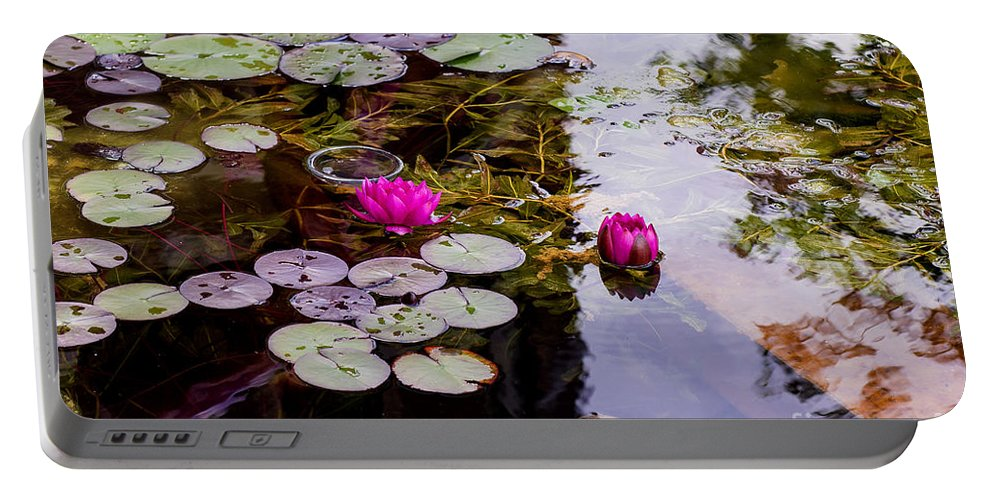 Water Lily Near Rijksmuseum Museum In Amsterdam Portable Battery Charger featuring the photograph Water Lily Near Rijksmuseum Museum by Yefim Bam