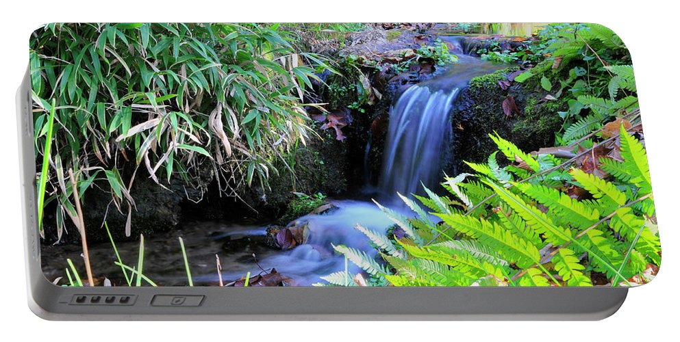 Water. Waterfall Portable Battery Charger featuring the photograph Waterfall In The Fern Garden by David Arment