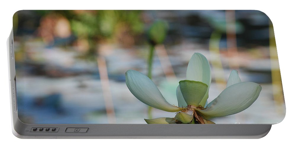 Botanical Portable Battery Charger featuring the photograph Waterlily Wash Horizontal by Heather Kirk