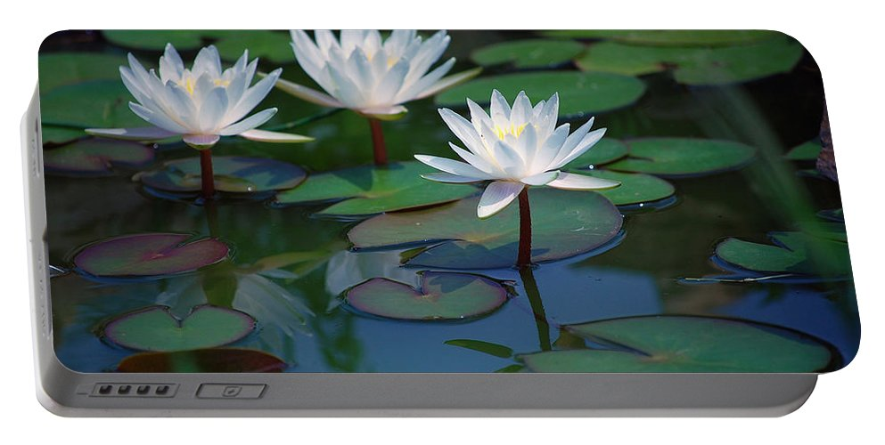 Waterlily Portable Battery Charger featuring the photograph Waterlilys by Robert Meanor
