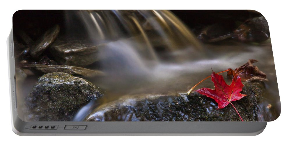 Fall Portable Battery Charger featuring the photograph Watermark by Evelina Kremsdorf