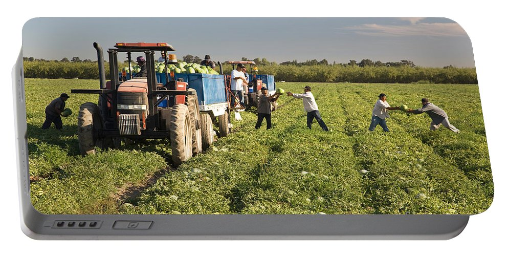 Worker Portable Battery Charger featuring the photograph Watermelon Harvest by Inga Spence