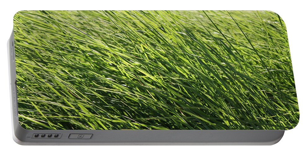 Grass Portable Battery Charger featuring the photograph Waving Grass by Lauri Novak