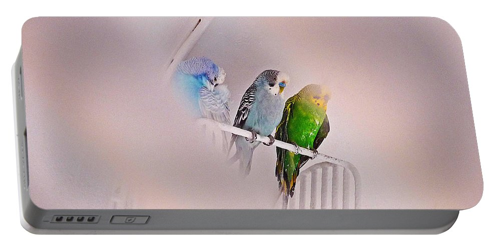 Birds Portable Battery Charger featuring the photograph We Three Birds by Charles Stuart